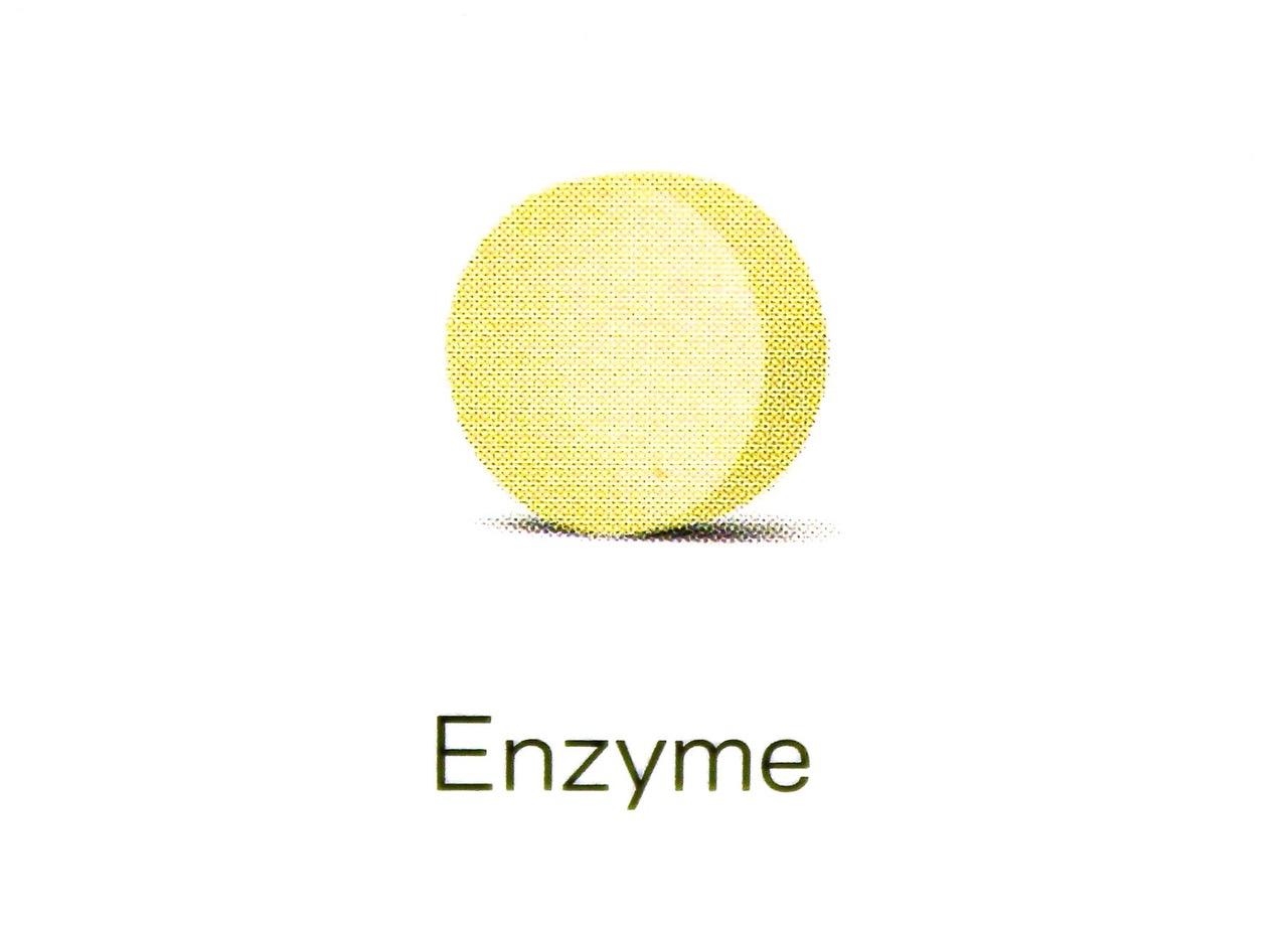 Enzyme_Orthotendo