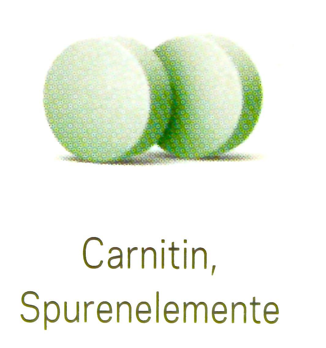 Orthofertil Carnitin