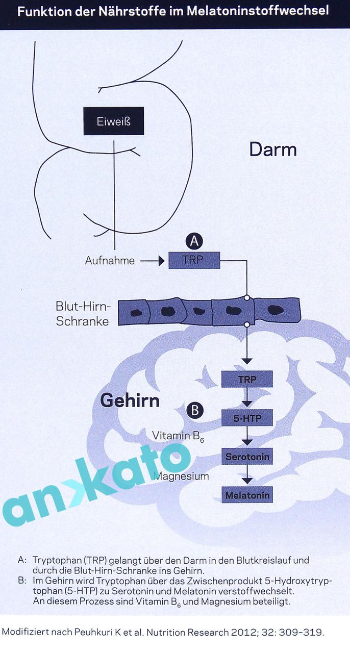 Ortholuna Funktion der Nährstoffe