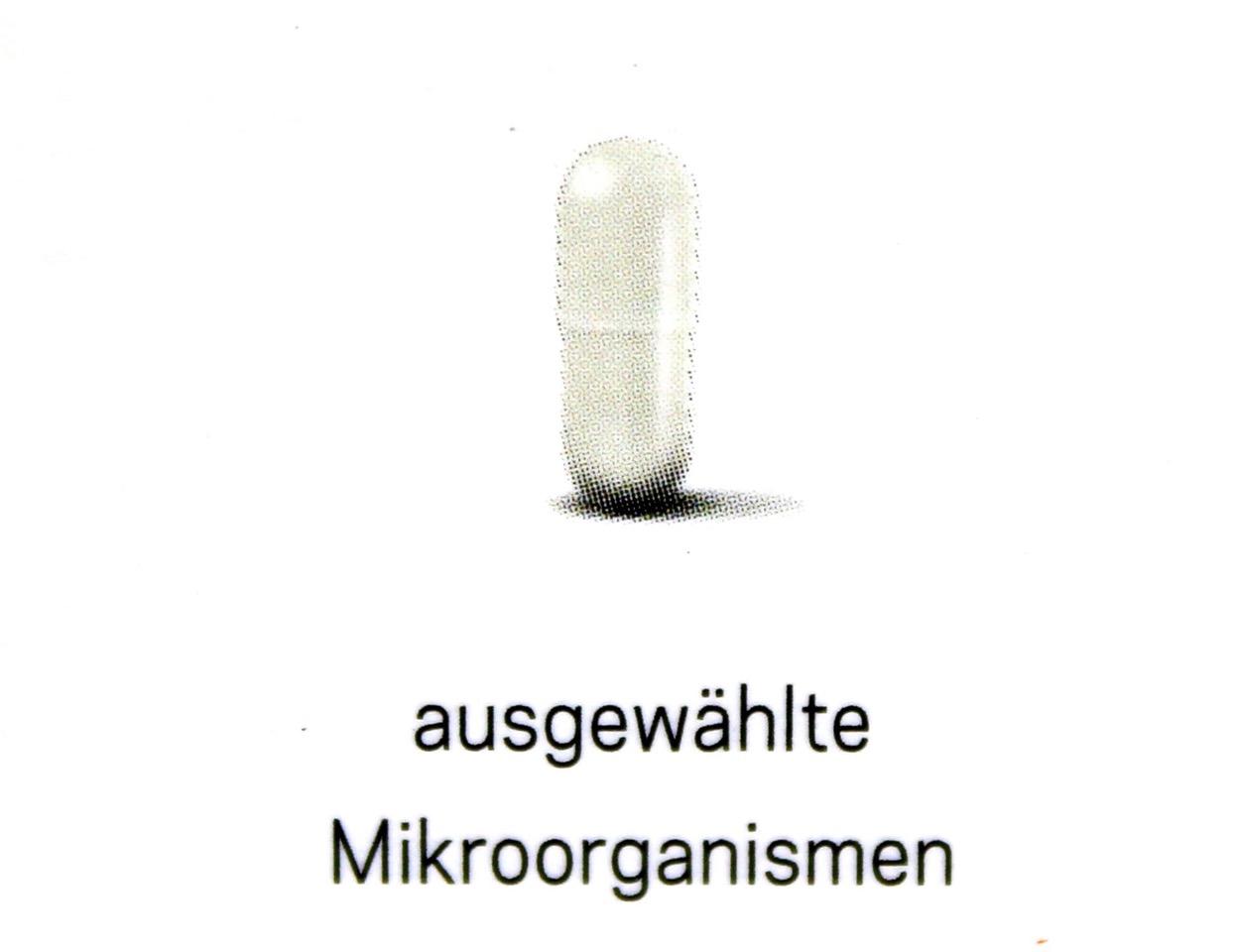 Mirkoorganismen